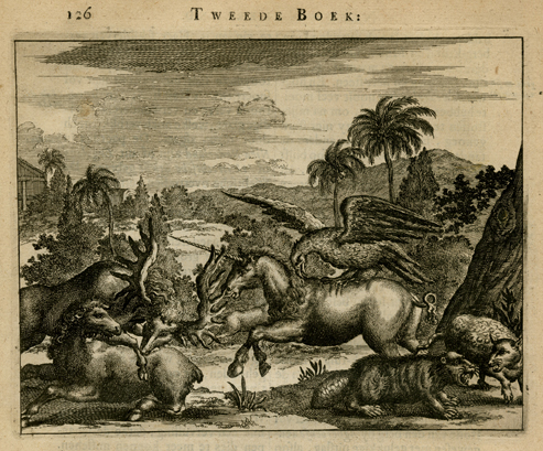 "Unicorn et al. (supplied title). By Arnoldus Montanus. Published by Jacob van Meurs, Amsterdam. Copper plate engraving, 1671. From Montanus' ""De Nieuwe en Onbe kende Weereld: of Beschryving van America"".  This view collects a menagerie of unusual animals that are found in the Americas including the elusive unicorn, an eagle, beaver and deer. $85.00"