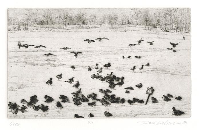 Geese. Deron DeCesare. Drypoint, 1999. Edition 35. $175.00
