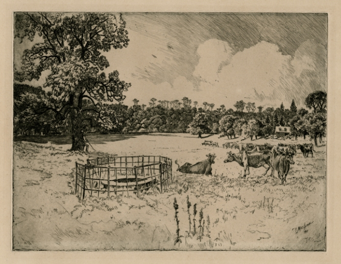 Scene of Cows and an Old Well in a Pasture. Charles Mielatz. Etching, 1911. LINK.