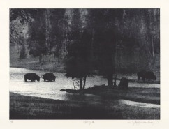 Wyoming IX. By Sylvie Covey. Photogravure, 2011. LINK. Edition of 6.