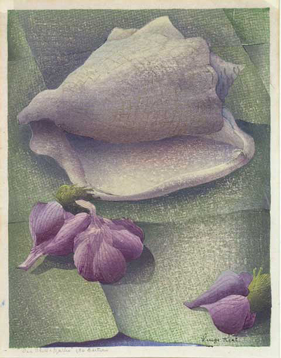 "Sea Shell and Carlic. Luigi Rist. Color woodcut, 1947. Signed in ink on the block. Titled and inscribed ""150 Edition"" in pencil."