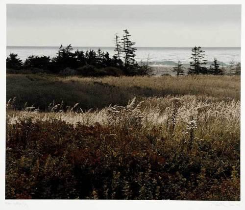 "Hartling Bay. Richard T. Davis. Color serigraph, 1993. Image size 17 3/4 x 20 1/4"" (445 x 509 mm). Edition 145. LINK."