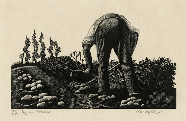 Digging Potatoes. By Clare Leighton. Wood engraving, 1935. Signed and titled in pencil. Edition 30.