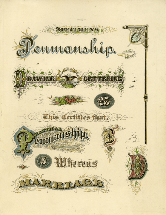 "Specimens. Engraving, 1880. Image size 11 x 8 1/2"" (282 x 218 mm). From a book of lettering and penmanship.  A page of examples of lettering. Good condition. LINK."