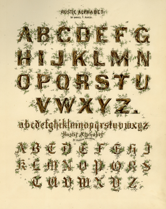 "Rustic Alphabet by Daniel T. Ames.  Rustic Alphabet by Charles Rollinson. Engraving, 1880. Image size 11 1/2 x 8 3/4"" (294 x 225 mm). From a book of lettering and penmanship.  Two decorative alphabets are pictured. LINK."