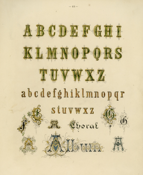 "Decorative Alphabet. (Supplied title)  Page 43. Engraving, 1880. Image size 10 x 8"" (225 x 204 mm). From a book of lettering and penmanship.  A decorative alphabet with very ornamental letters below. LINK."
