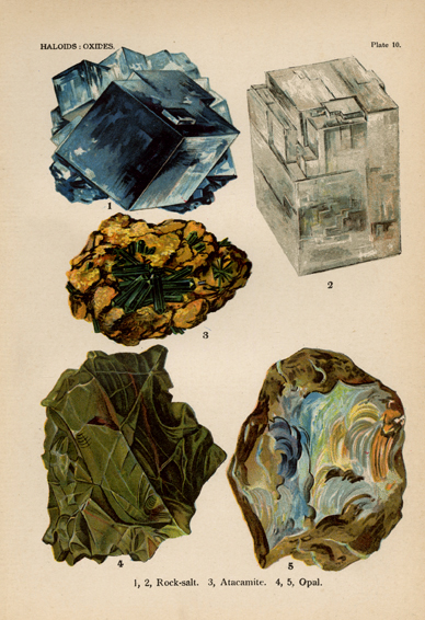 "Haloids : Oxides. Plate 10. 1,2, Rock-salt. 3, Atacamite. 4,5, Opal. From ""The World's Minerals"" by J. Spencer. LINK."