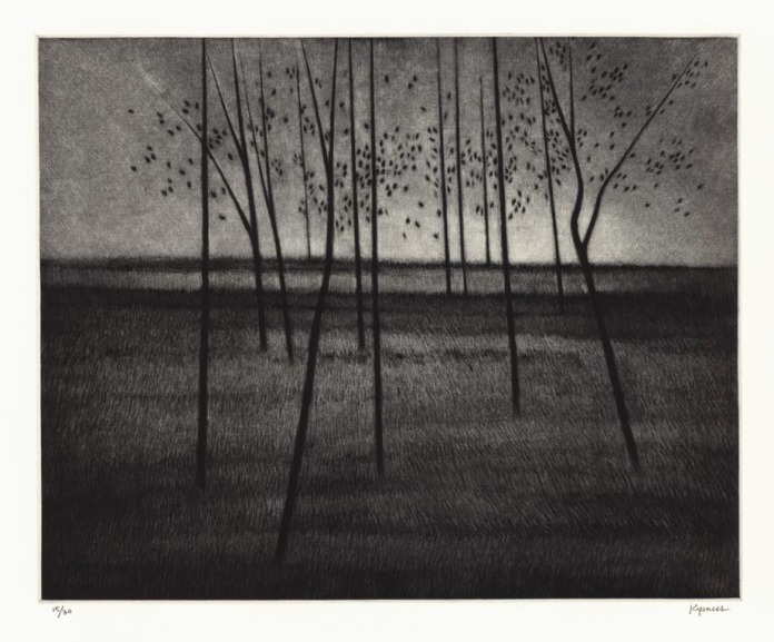 "Trees, a composition. Robert Kipniss. Mezzotint, 2014. Image size 9 1/2 x 11 1/2"" (235 x 295 mm). Edition 30."