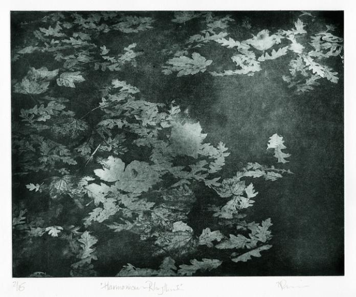 "Harmonious Rhythm I. Nancy Previs. Photo intaglio, 2014. Ed 2/15. Image size 9 5/8 x 12"". LINK."