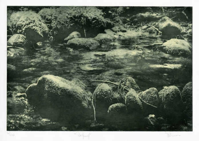 Rockpool. Nancy Previs. Photo intaglio, 2014. Ed 2/20. Image 10 5/16 x 15 1/4'. LINK.