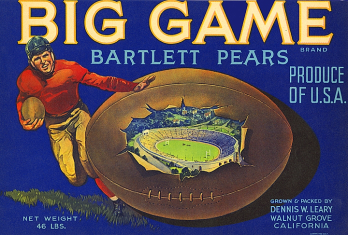 "Big Game Bartlett Pears. Color lithograph, c. 1930's. Image size 10 7/8 x 7 3/8"" (276 x 187mm). Great image of football player with ball, in a stadium. The Big Game is the Cal Berkeley vs Stanford match, the grower graduated from Berkeley. Shipper: Dennis W. Leary. Origin:  Walnut Grove, Sacramento Delta CA.  Original fruit crate label. Before the use of mass produced cardboard boxes, fruit growers, packers and shippers printed labels and attached them to the wooden fruit crates or boxes used in shipping. Distributors would use catchy titles, images, and slogans to set themselves apart from other fruit brands. LINK."