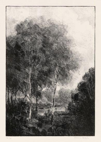 "Young Maples.  Albert W. Barker. Lithograph, c.1929. Image size 10 13/16 x 7 3/8"" (275 x 182 mm). Edition 50. LINK."