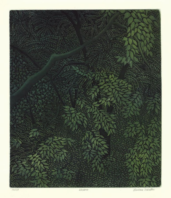 "Verdure. By Barbara Minton. Etching and aquatint printed in color, 2000. Image size 17 3/8 x 14 3/4"" (44.1 x 37.5 cm). LINK."